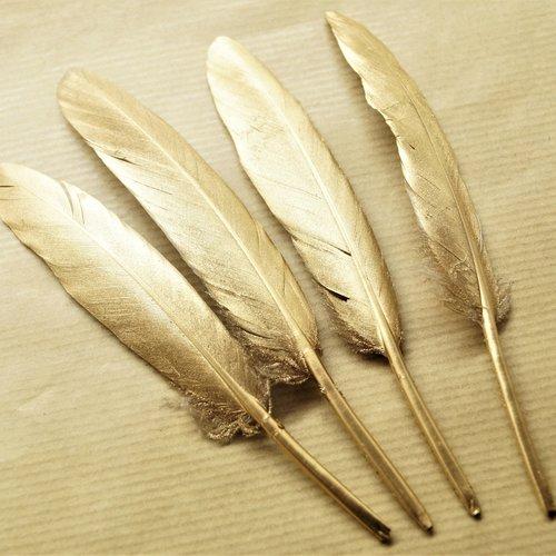 Plumes naturelles de canard dorées 10 à 15 cm par lot de 10