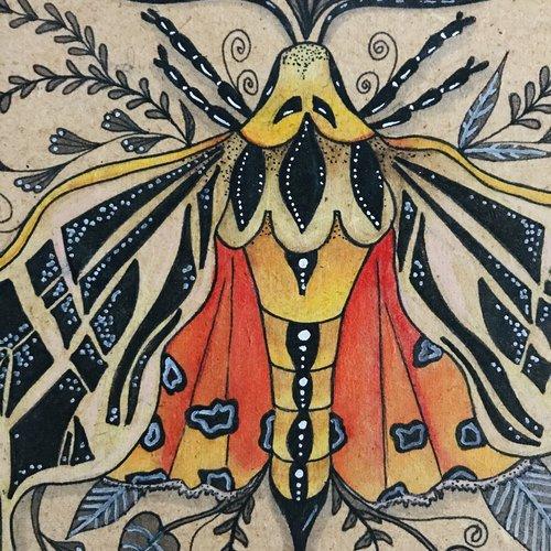 Cadre papillon de nuit sur bois