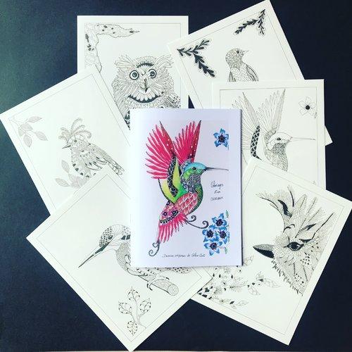 Carnet de coloriage zen oiseaux
