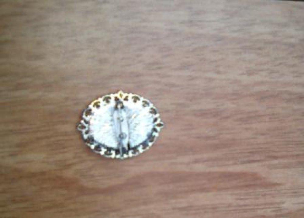 Broche ovale en Nacre Normande sur support argenté
