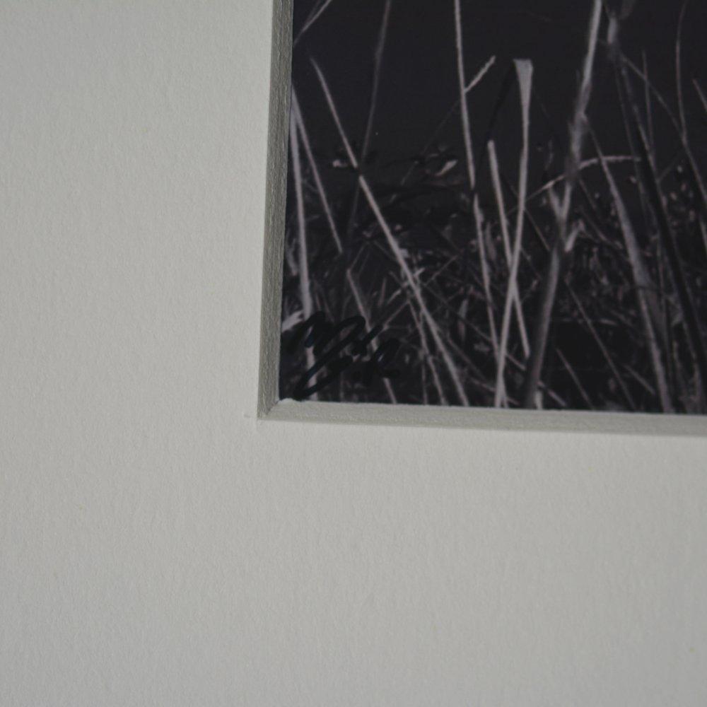 Impression photographique noir et blanc - Bateau