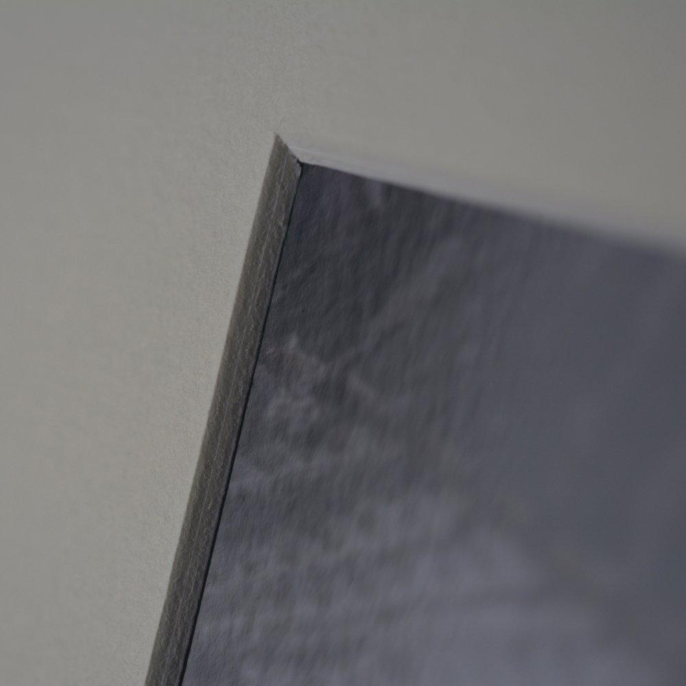 Impression photographique couleur - Fougère
