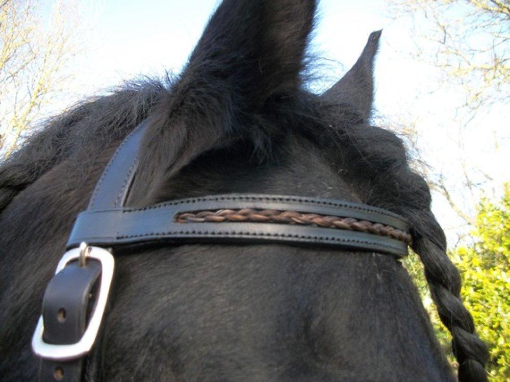 Pompon en crins de chevaux ou en cuir