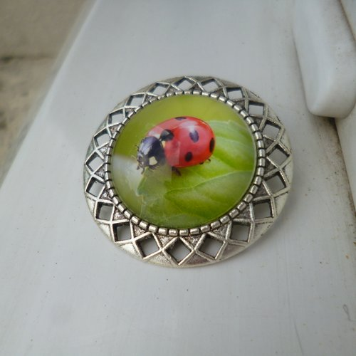 Broche épingle argent cabochon coccinelle 25mm