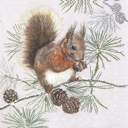 Serviette papier petit ecureuil et les pommes de pin