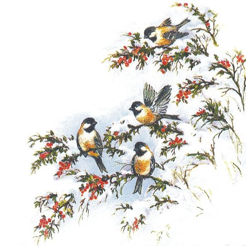 Serviette papier petites mésanges sur l'arbre de baie recouvert de neige