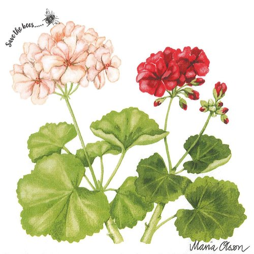Serviette papier géranium rouge et rose save the bees