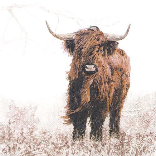 Serviette papier vache highlander