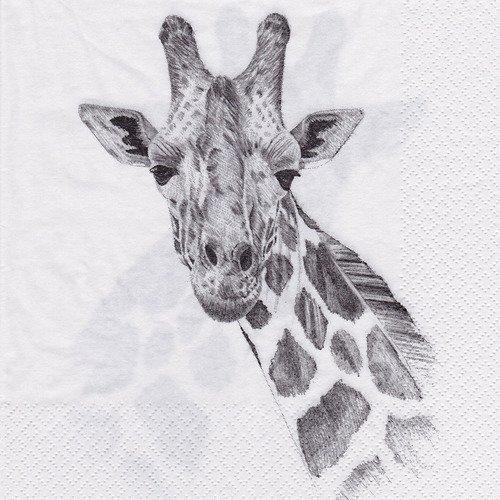 AEMAPE Serviette /à Main imprim/ée Girafe et Tournesol Grandes Serviettes de Bain Douces tr/ès absorbantes polyvalentes pour Le Spa de lh/ôtel de Salle de Bains de Salle de Bains 12 X 27
