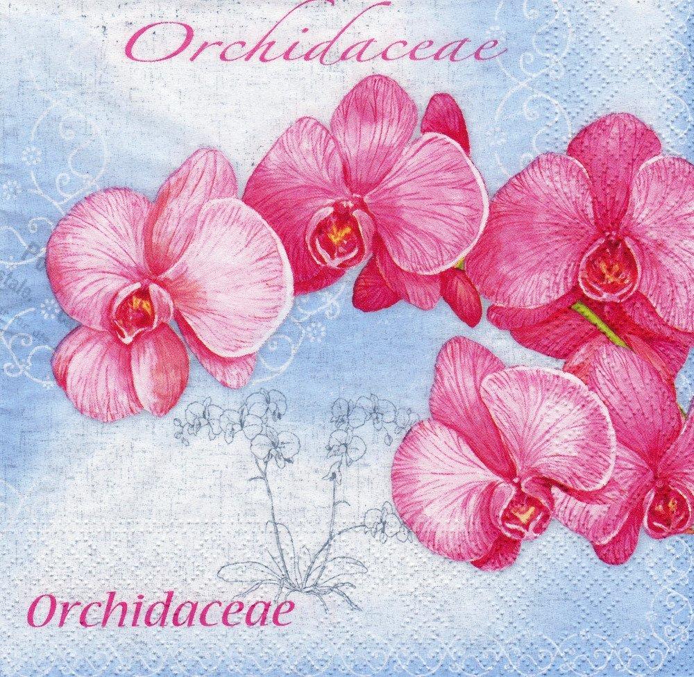 Serviette Orchidée Rose sur Toile Romantique Bleue