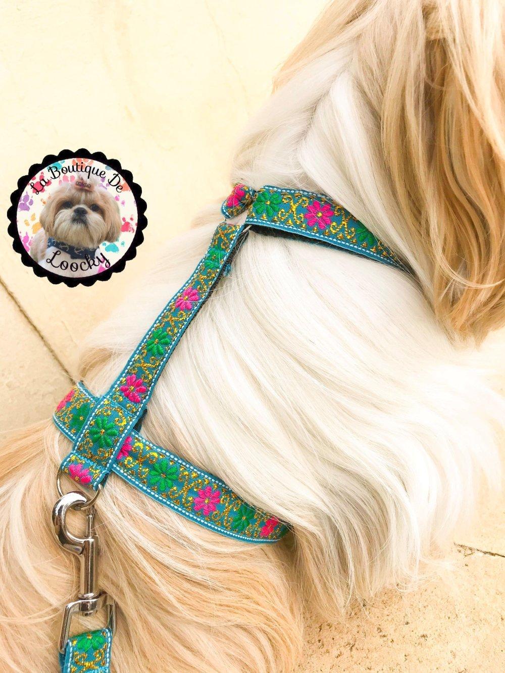 HARNAIS LAISSE pour CHIEN chic turquoise / laisse pour chien / chien chic /
