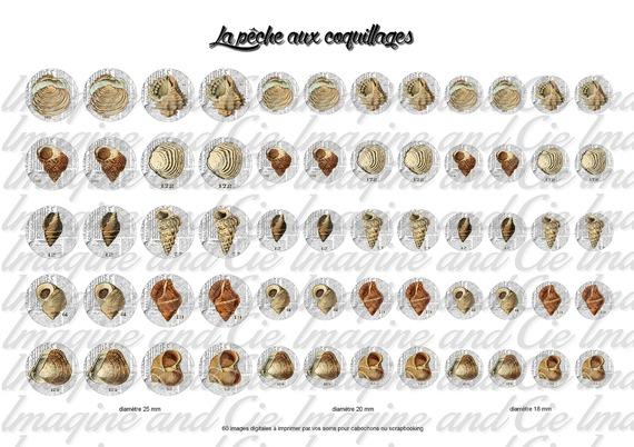 60 images digitales pour bijoux cabochons, scrapbooking , diamètre 25 mm, 20 mm, 18 mm sur le thème la pêche aux coquillages