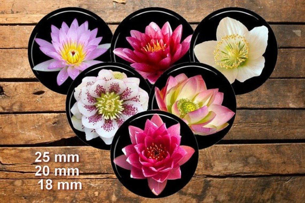 Fleurs de lotus / Cabochon image numérique feuille de collage téléchargement Diy digital printable bouteille cap