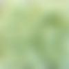 Perles à facettes vertes 6x4mm x30 pve5-15.