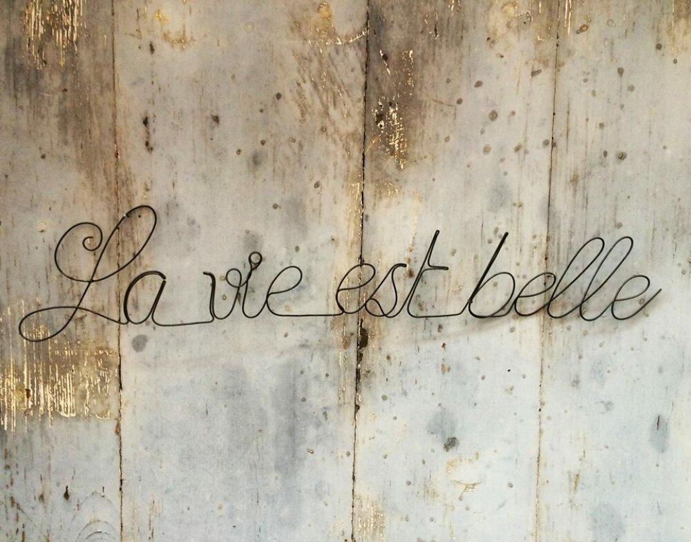 Phrase Citation Mot Murale En Fil De Fer La Vie Est Belle Décoration Murale Lettre Plaque De Porte Cadeau Poème Déco Poétique Wire