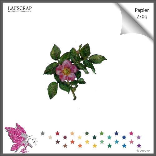 Découpe scrapbooking, fleur , plante jardin feuille feuillage découpe papier embellissement