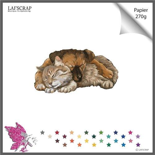 Découpe scrapbooking, animal chat chien  découpe papier embellissement faire part embellissement carte