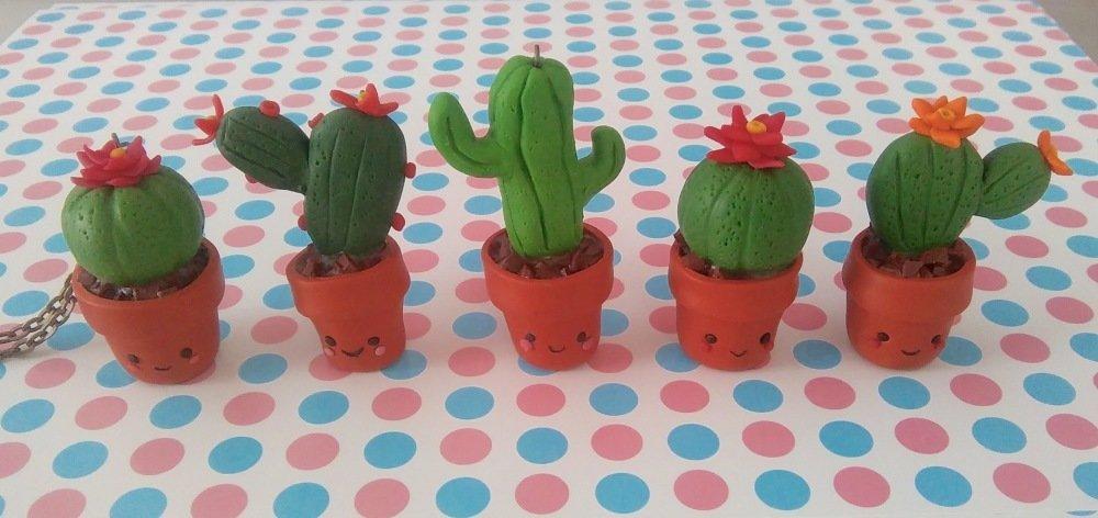 Cactus boule à fleur rose.