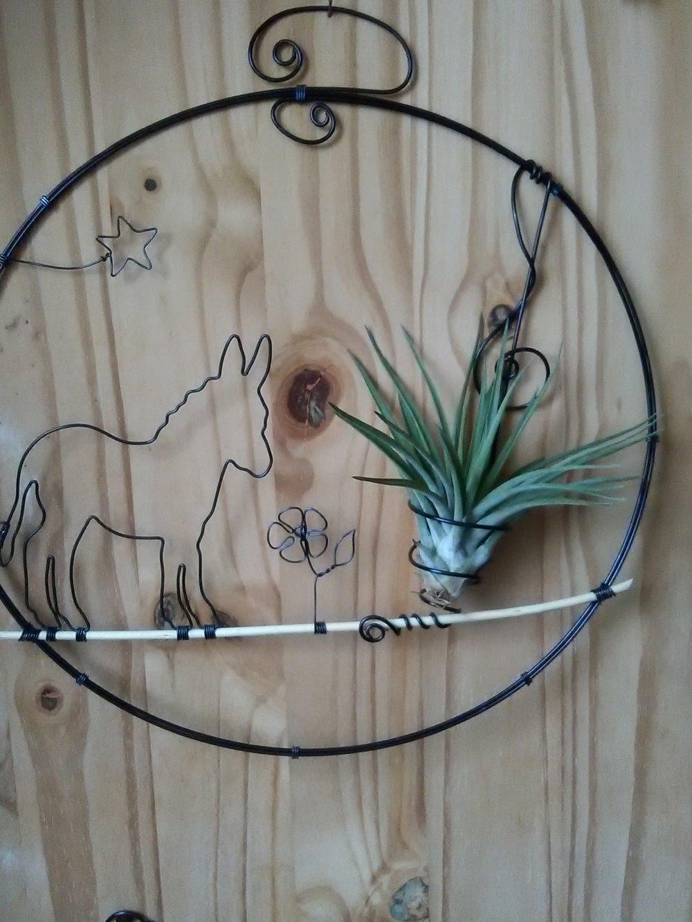 Les Filles De L Air Plante tillandsia ° décoration fil de fer ° décoration âne ° plante épiphyte °  fille de l'air