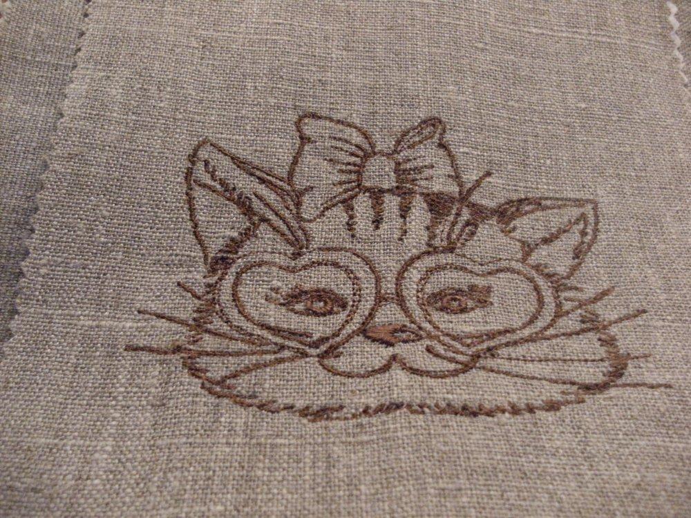 chat a lunettes