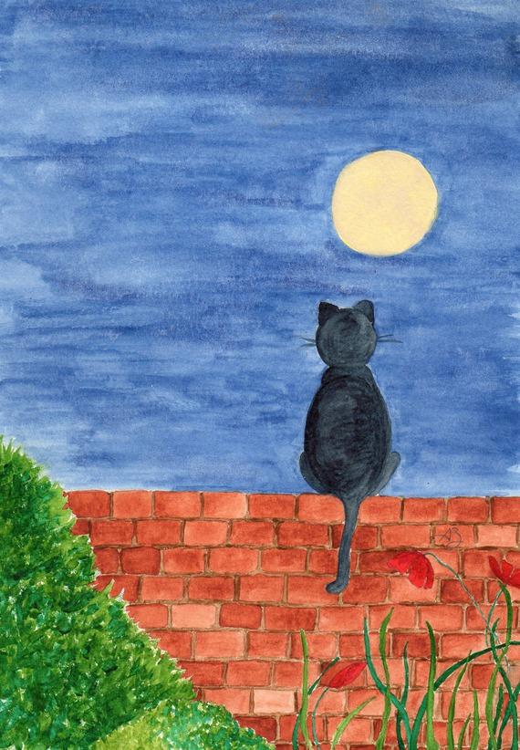 Carte postale - Chat au clair de lune