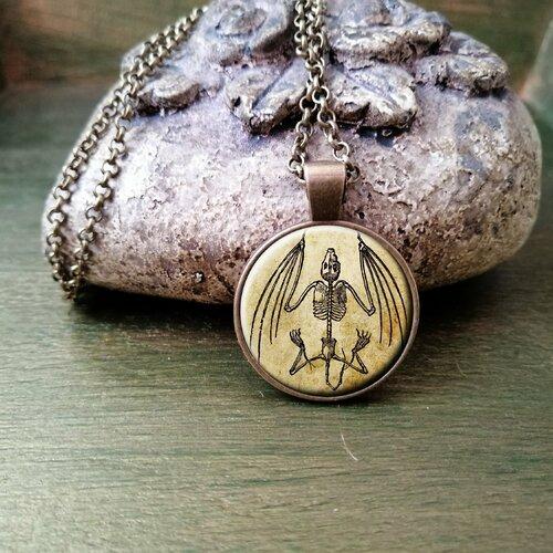 Squelette de chauve-souris, collier pendentif chauve-souris, collier anatomie animale, collier halloween, bijoux gothique, illustration