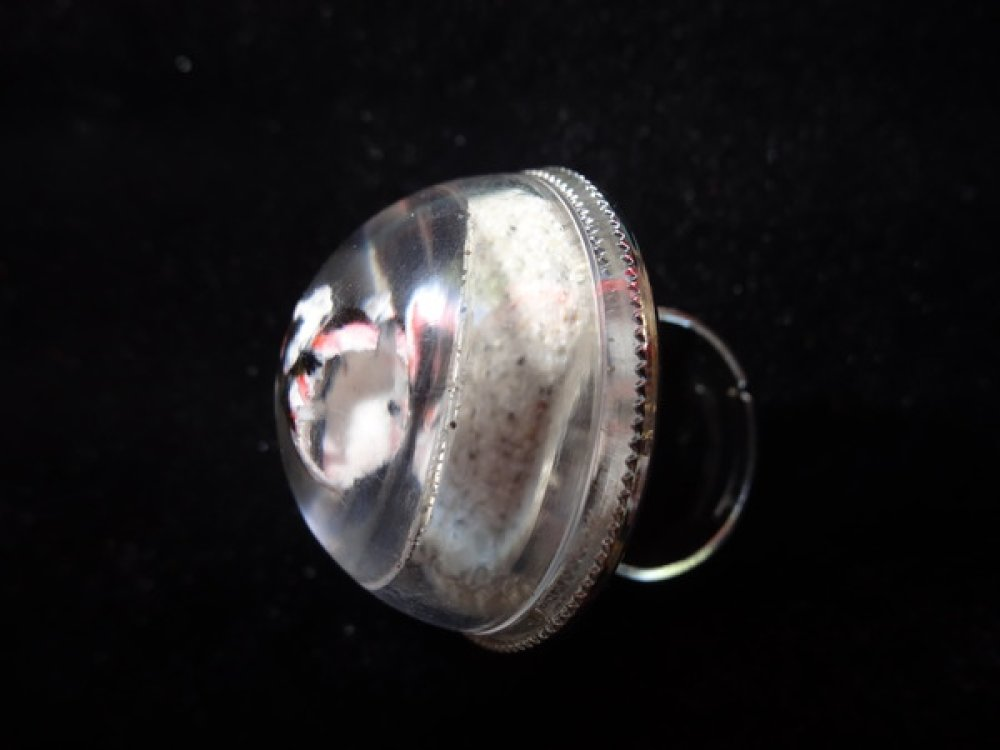 BAGUE dome estivale, poisson noir et blanc, sur fond de sable mobile / Diamètre 30mm
