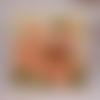 Carte merci fleur géranium saumon remerciement maîtresse