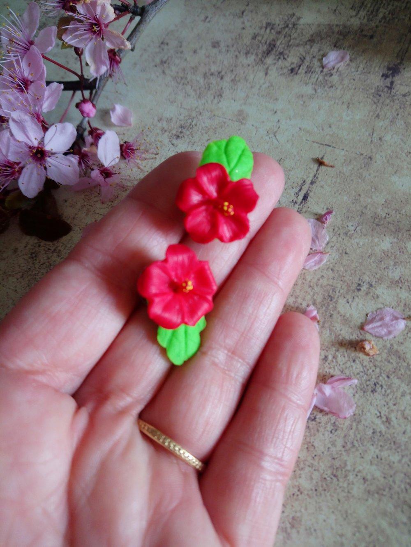 ?Fleurs d'hibiscus rouge