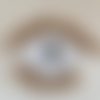 Le bon œil