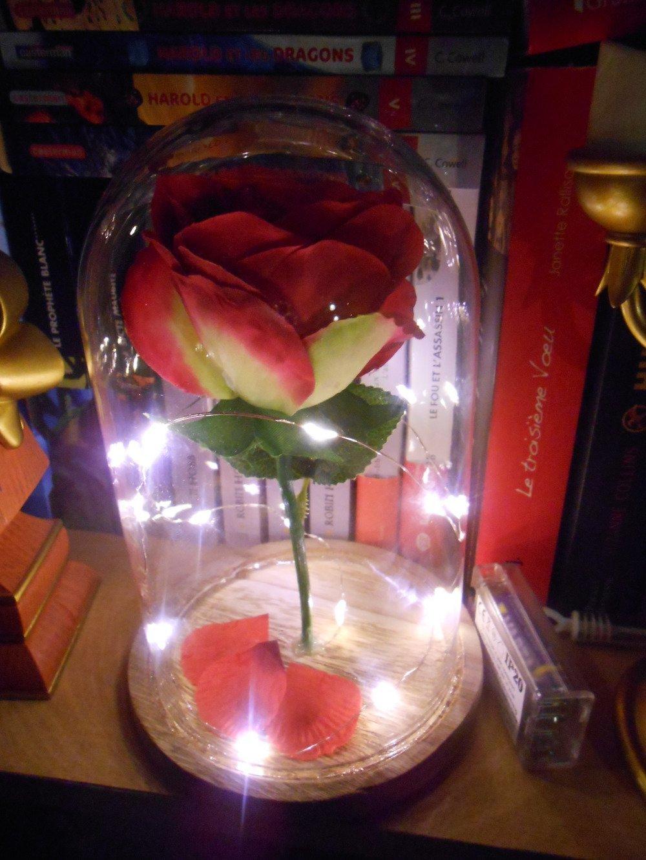 Rose sous cloche, inspirée de l'univers de La belle et la Bête (guirlande apparente)