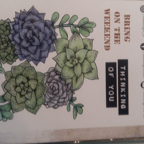 Tampon(5) studiolight hortensia