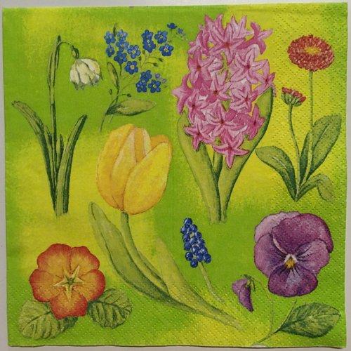 Serviette en papier «fleurs variées sur fond vert»