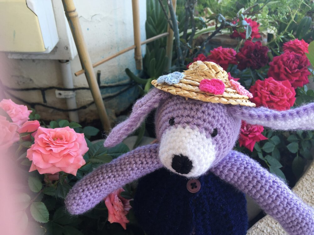 Doudou petit chien et son joli chapeau