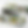 Ruban galon tissé motif papillon  vert, jaune, rouge et noir