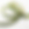 Galon élastique en organza vert et paillettes dorés
