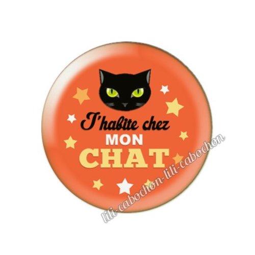 Cabochon résine a coller 25 mm chat pp73