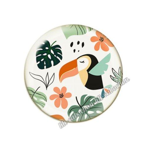 Cabochon résine a coller 25 mm tropical toucan pp110