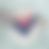 Lotus ▽ collier en cuir bleu et rose