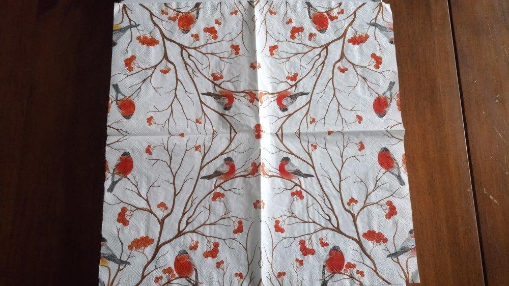 """Serviettes en papier thème """"oiseau"""""""