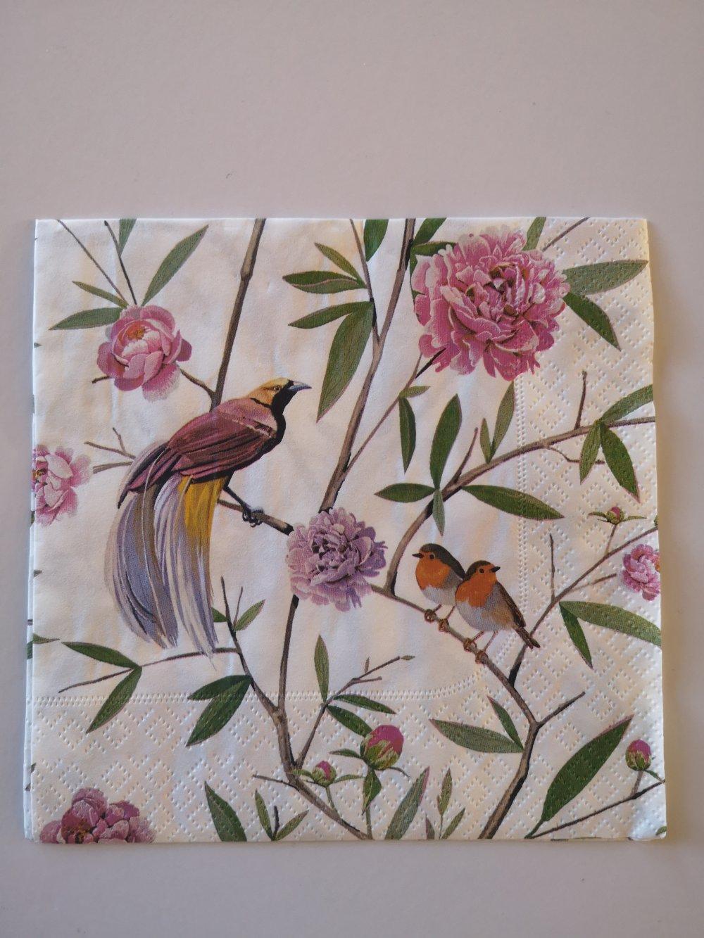 Serviettes en papier motifs oiseaux