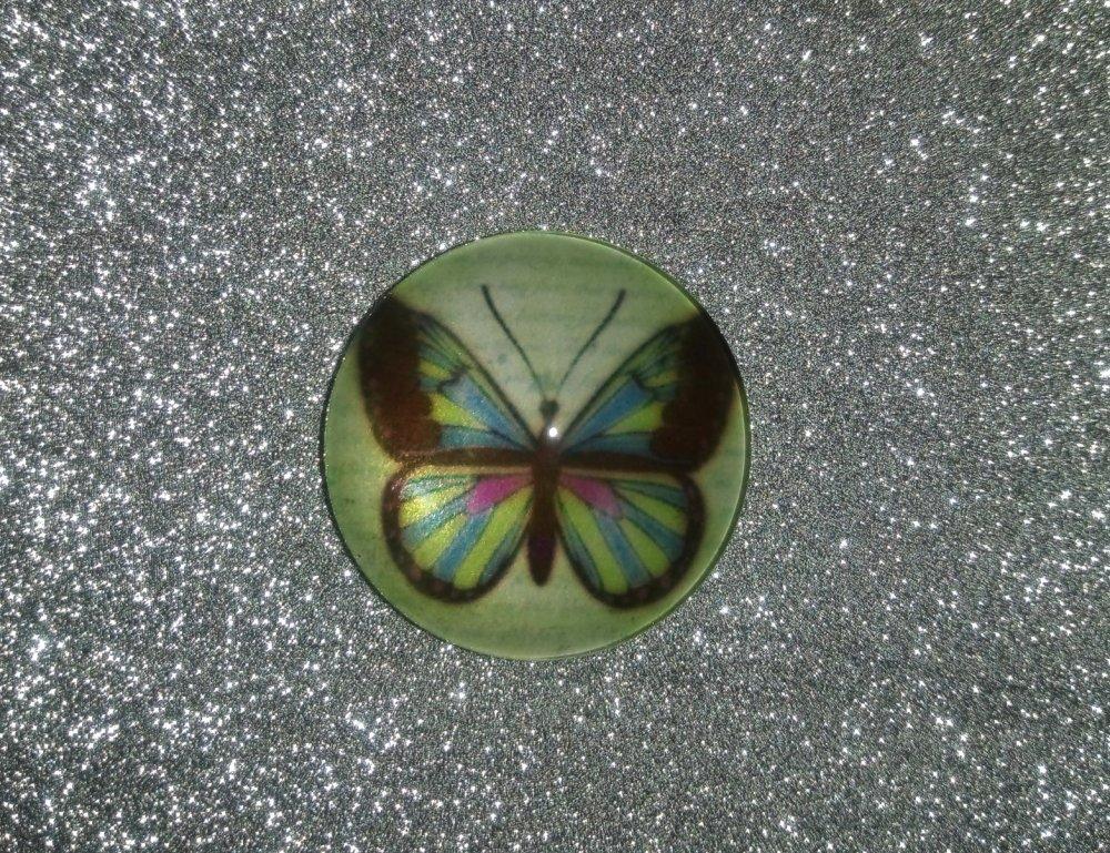 Lot de 3 Cabochons papillon 25mm
