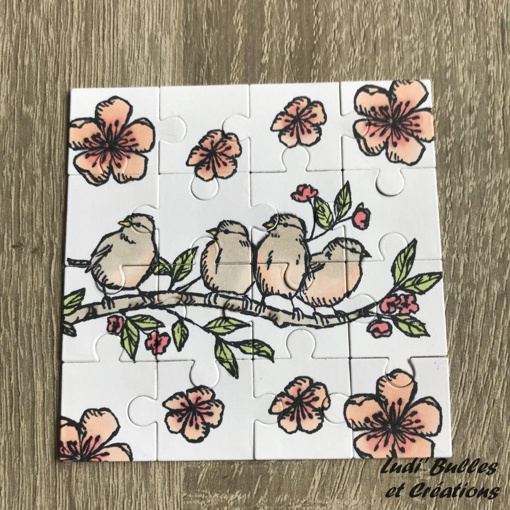 Puzzle et sa boîte, Oiseaux