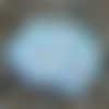 Lingette lavable démaquillante ginkgo biloba