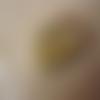 1 pendentif porte-photo bronze 28mm scorpion