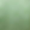 Biais vichy vert, blanc et argent -  2cm