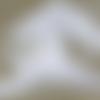 Ruban gros grain blanc - 12mm