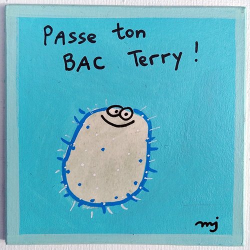 """Magnet """"passe ton bac terry"""""""