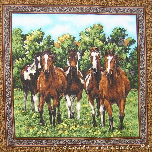 Coupon tissu patchwork vignette panneau  chevaux  mustang au galop