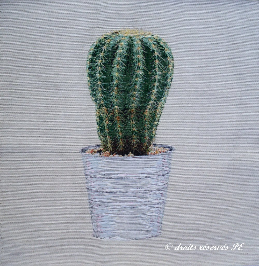 Coupon Tissu Tapisserie Panneau CACTUS n° 3, tissu jacquard pour coussin, sac, ameublement, décoration intérieure